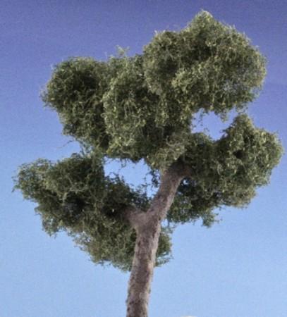 árbol A Jaraiz